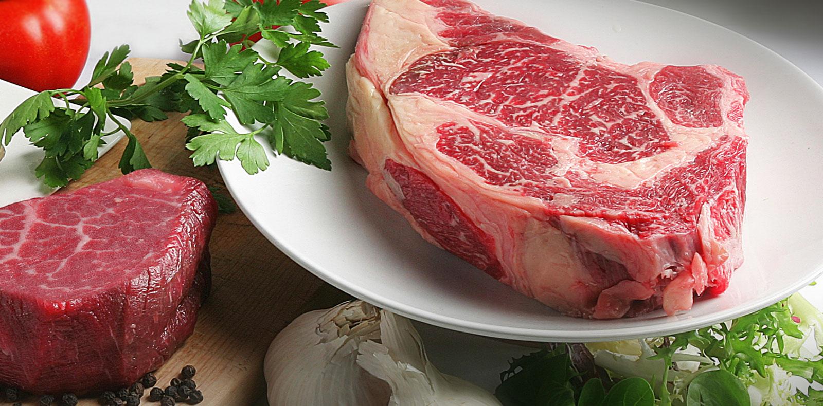 carnes-sup2